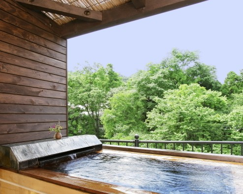 平日限定!滑らかな「卵水」温泉を満喫!とろ~りやわらか美肌の湯♪【露天風呂付客室】